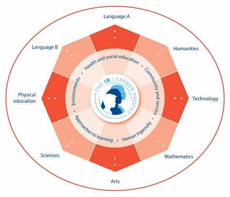 国际初中课程IGCSE和MYP哪个好?