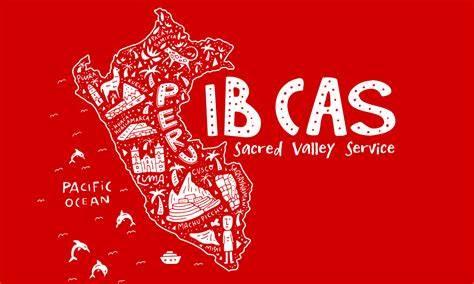 IB核心课程中的CAS究竟是什么?